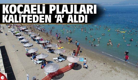 """Kocaeli'nin sahilleri """"A"""" kalite"""