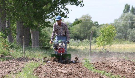 Kırklareli'nde tarım işçileri bayramı tarlada çalışarak geçiriyor