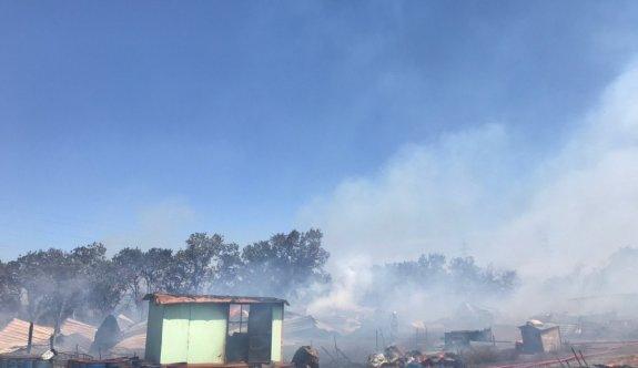 GÜNCELLEME - Bursa'da makilik alanda çıkan yangın ormana sıçradı