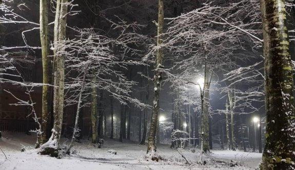Sakarya, Kocaeli, Karabük ve Bartın'ın yüksek kesimlerine kar yağdı