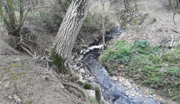 Bursa'da atık sularını dereye boşalttığı belirlenen fabrikayla ilgili işlem başlatıldı