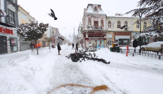 Soğuk havanın etkili olduğu Edirne'de sokak hayvanları unutulmadı