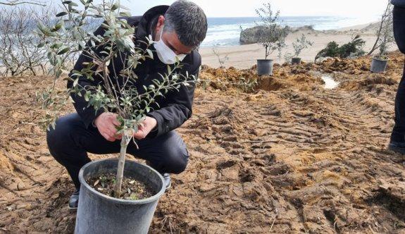 Rusya'dan sürgün edilen Çerkes ve Abhazlar anısına Kocaeli'de 300 zeytin fidanı dikildi