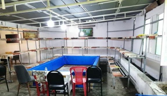 Çanakkale'de horoz dövüştüren ve Kovid-19 tedbirlerini ihlal eden 54 kişiye 151 bin lira ceza kesildi