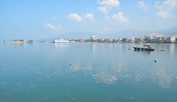 Balıkesir'in Güney Marmara sahilini kaplayan deniz salyası rüzgarın etkisiyle dağılmaya başladı