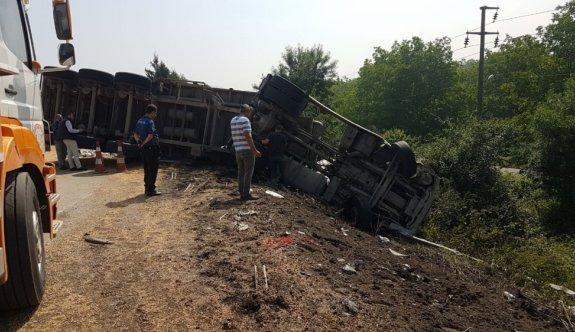 Anadolu Otoyolu'nda soya fasulyesi yüklü tır devrildi: 1 yaralı