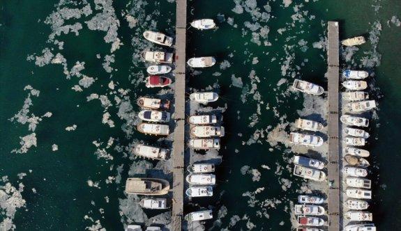 Çanakkale merkezinde kıyılarda müsilaj yoğunluğu oluştu