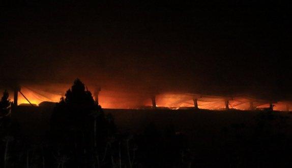 GÜNCELLEME - Kırklareli'nde büyükbaş hayvan çiftliğinde çıkan yangın kontrol altına alındı