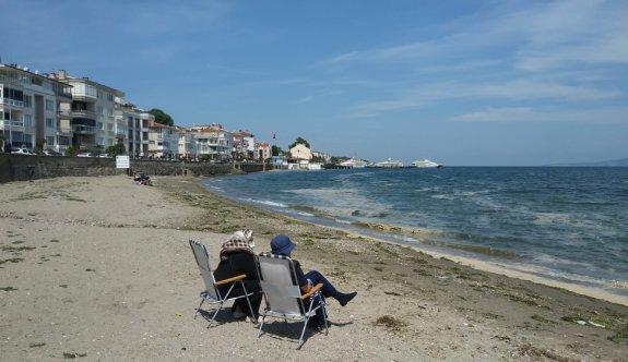 Marmara Denizi'ndeki müsilaj, Çanakkale ve Bursa kıyılarında rüzgarın etkisiyle yüzeyde görülüyor