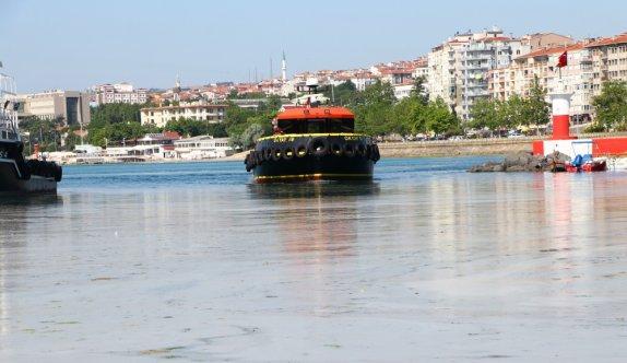 Tekirdağ'da lodos nedeniyle kıyılara müsilaj geri geldi