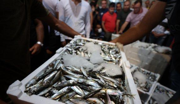 Bandırma Balık Hali'ndeki mezatta sezonun ilk balıkları alıcı buldu