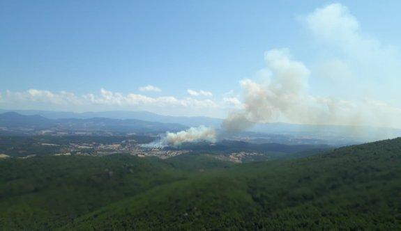 Çanakkale'de çıkan orman yangınına müdahale ediliyor