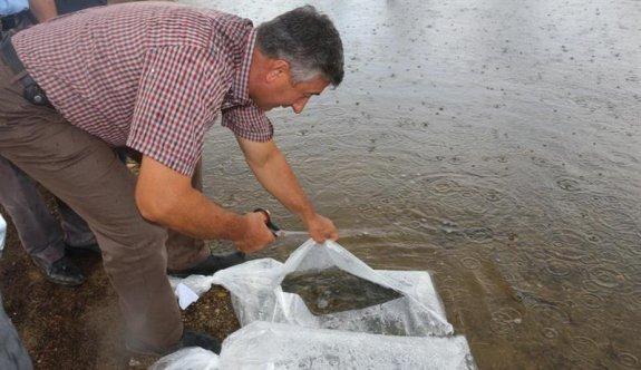 Kırklareli'nde 23 gölete 164 bin 459 balık yavrusu bırakıldı