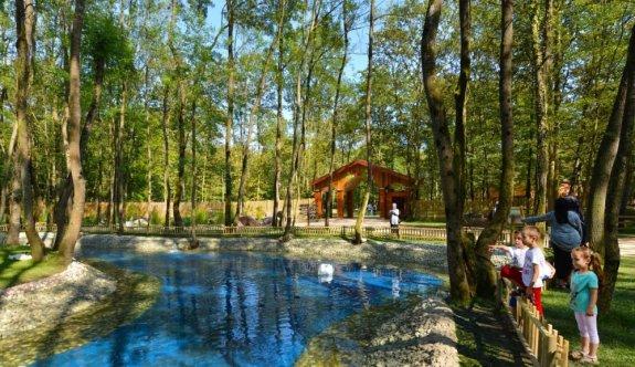 Ormanya'yı 9 ayda 4,5 milyonu aşkın kişi ziyaret etti