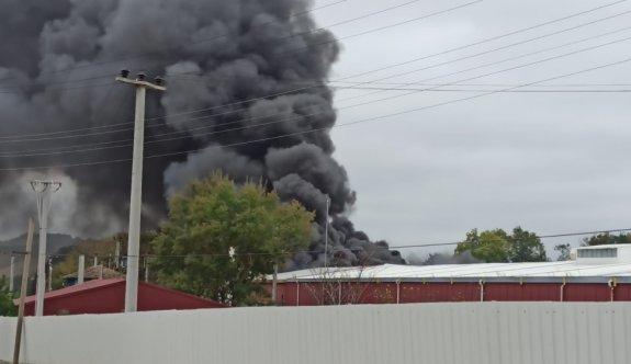 Kocaeli'de raf fabrikasında çıkan yangına müdahale ediliyor