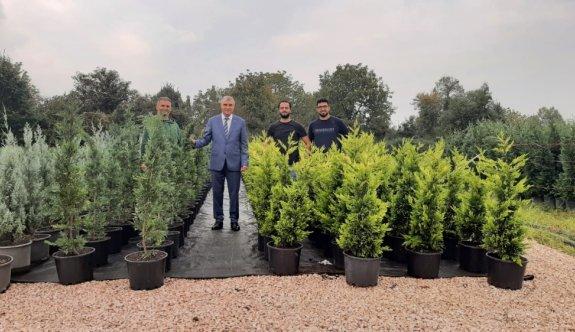 Sakarya'da belediyenin ürettiği fidanların Türkiye'nin her bölgesine gönderilmesi hedefleniyor