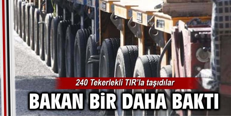 240 Tekerlekli TIR'la taşıdılar
