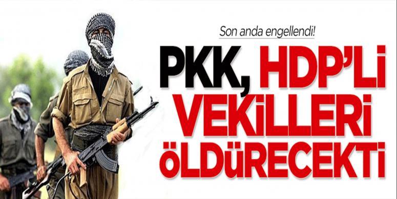 PKK, HDP'li vekilleri öldürecekti!