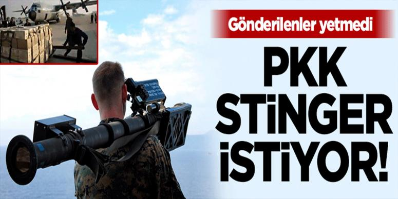 PKK ABD'den Stinger istiyor