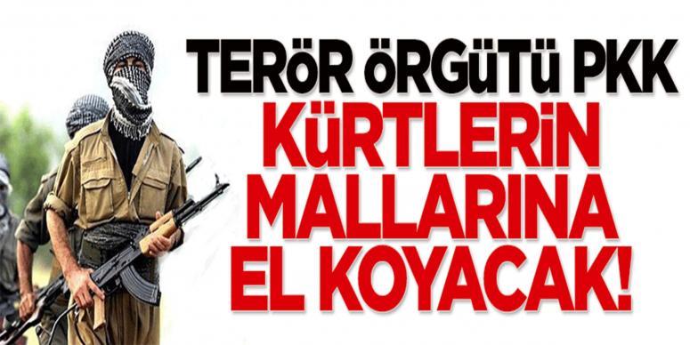 PKK, Kürtlerin mallarına el koyacak!