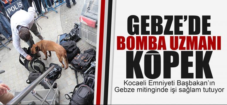 Gebze'de bomba uzmanı köpek