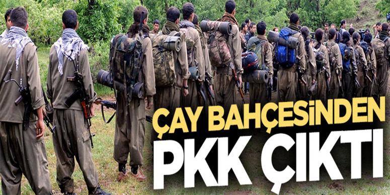 Diyarbakır'daki çay bahçesinden PKK cephaneliği çıktı
