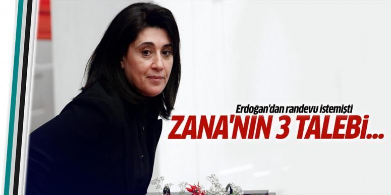 Zana'nın kalıcı çözüm için üç talebi