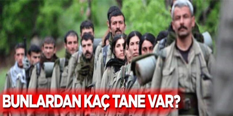 Kaç tane PKK'lı terörist var?