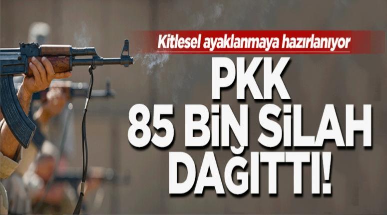 MHP'li vekilden PKK'nın 80 bin silah dağıttığı iddiası