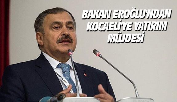 Bakan Eroğlu'ndan Kocaeli'ye yatırım müjdesi