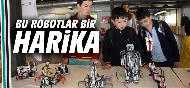 Bu robotlar bir harika!