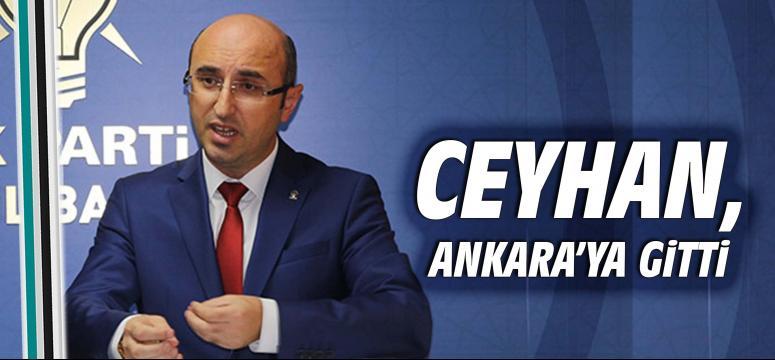 Şemsettin Ceyhan, Ankara'ya gitti