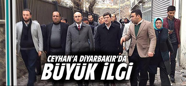 Ceyhan'a Diyarbakır'da büyük ilgi