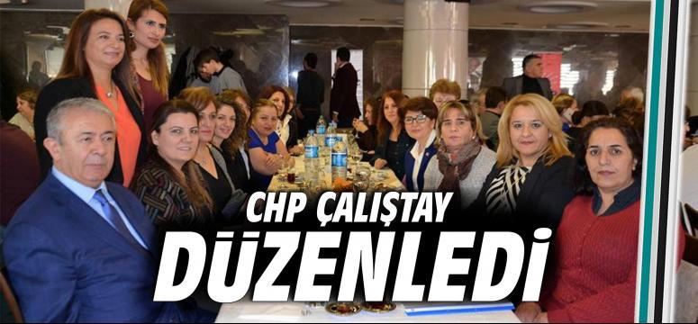 CHP Çalıştay düzenledi