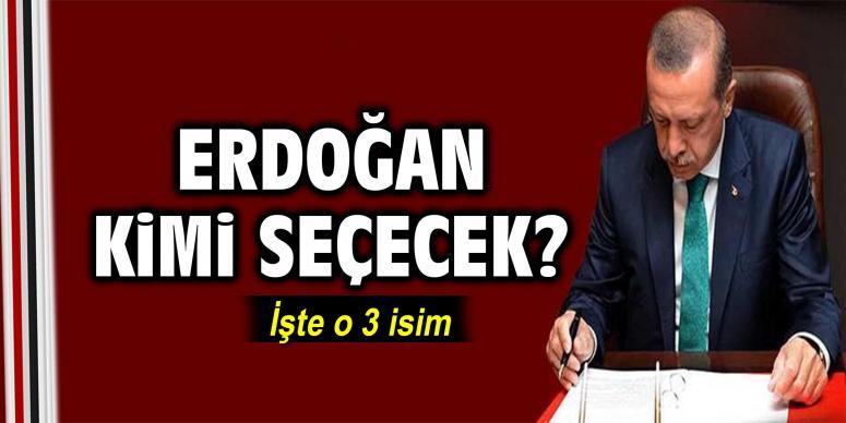 Cumhurbaşkan'ı Erdoğan kimi seçecek?
