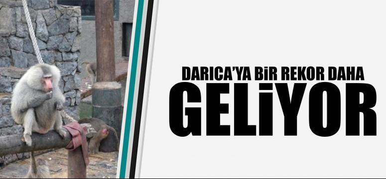 Türkiye'de Rekora Koşuyor