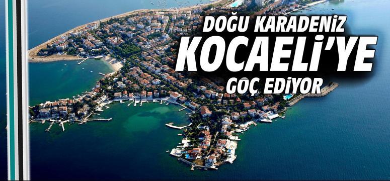 Doğu Karadeniz Kocaeli'ye göç ediyor