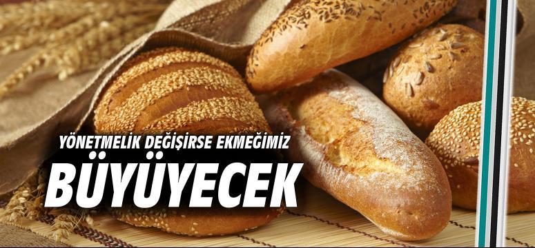 Yönetmelik değişirse ekmeğimiz büyüyecek