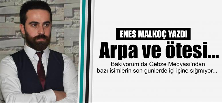 Enes Malkoç yazdı: