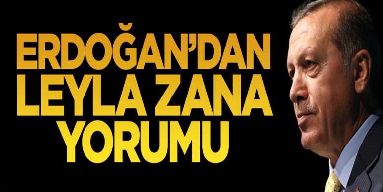 Cumhurbaşkanı Erdoğan'dan Leyla Zana yorumu