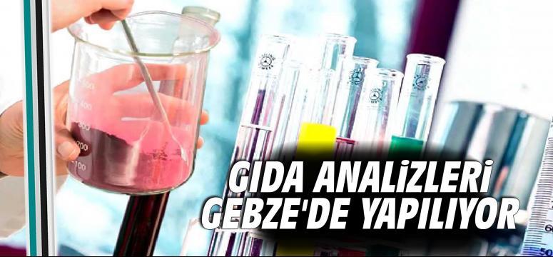 Gıda analizleri Gebze'de yapılıyor