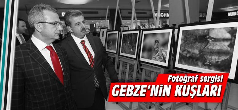 """Doğa fotoğrafçısı Ümit Malkoç'un objektifinden """"Gebze'nin Kuşları"""""""