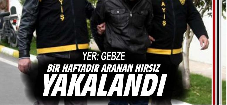Bir haftadır aranan hırsız Gebze'de yakalandı