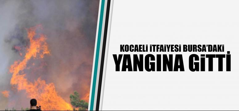 Kocaeli itfaiyesi Bursa'daki orman yangınına gitti