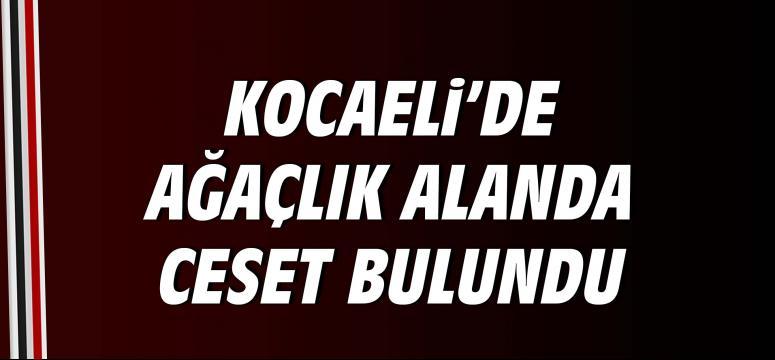 Kocaeli'de ağaçlık alanda ceset bulundu
