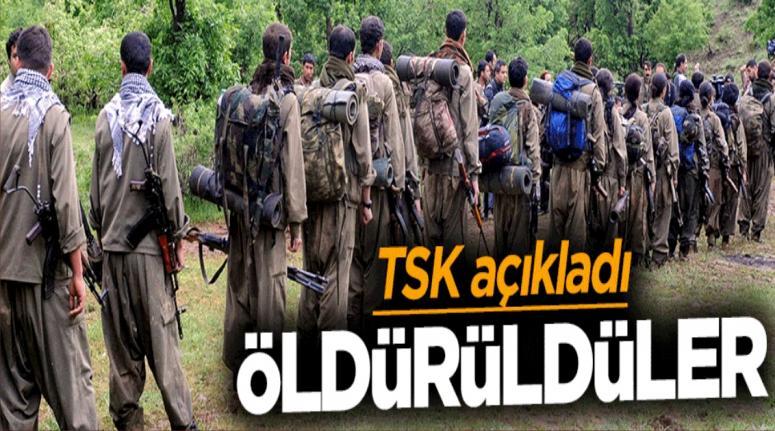 TSK açıkladı: 34 terörist öldürüldü