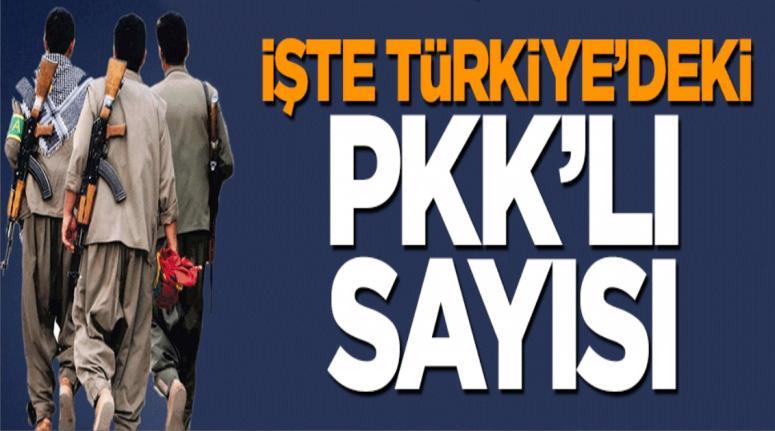 İşte Türkiye'deki PKK'lı sayısı