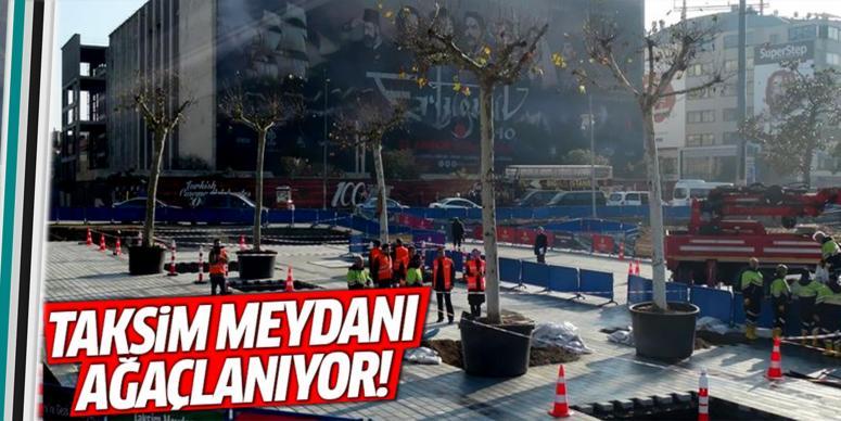 Taksim Meydanı'na ağaçlanıyor