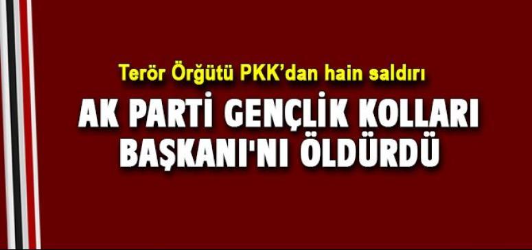 Terör Örğütü PKK'dan hain saldırı