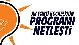 AK Parti Kocaeli'nin programı netleşti
